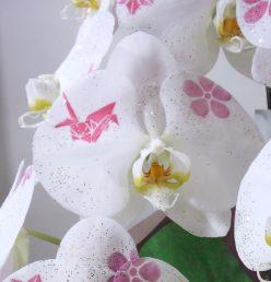 化粧蘭だったり、普通のお花だったり